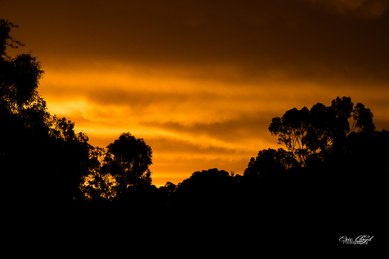 Sunset at the State Equestrian Centre-2