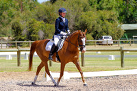 Penny Hill Park Rising Star Pony Class