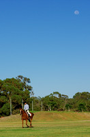 Acres Dressage Training Janurary